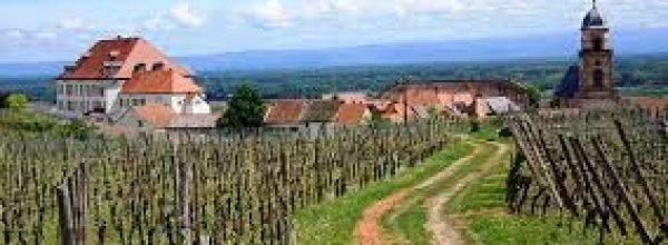 Tervetuloa Alsacen viinien näyttelyyn